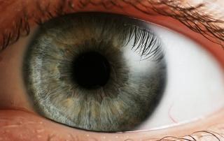 Eye_iris